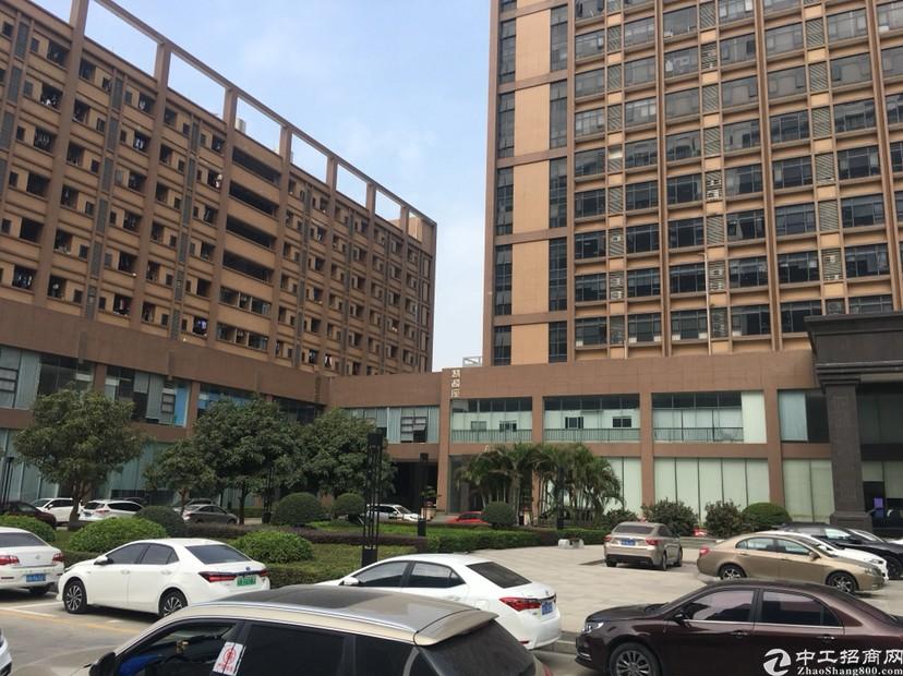 光明高新区红本高端厂房写字楼2800平米,豪华装修