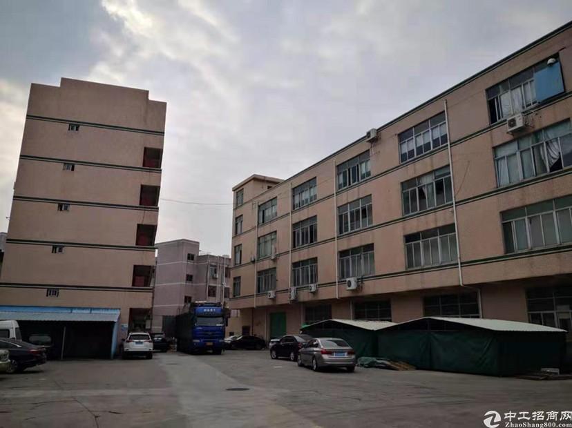 龙岗平湖工业园新出1楼1950平标准厂房出租