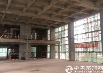 深圳市双地铁口,独栋甲级写字楼稀缺小独栋多功能用途图片2