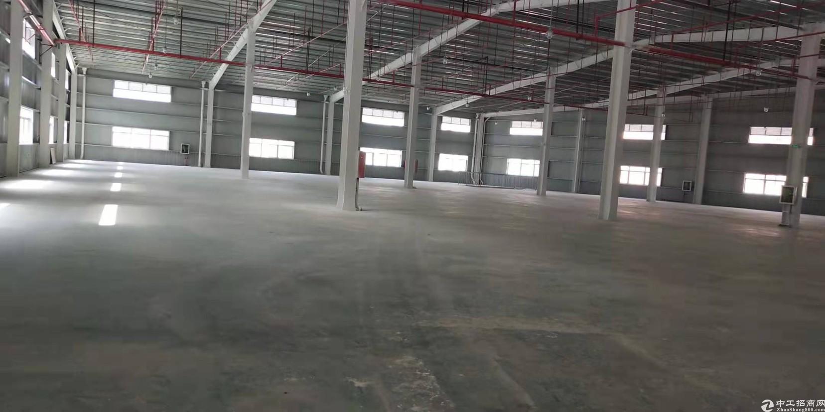 深圳横岗7000平大型钢构出租,滴水7米灵活分租