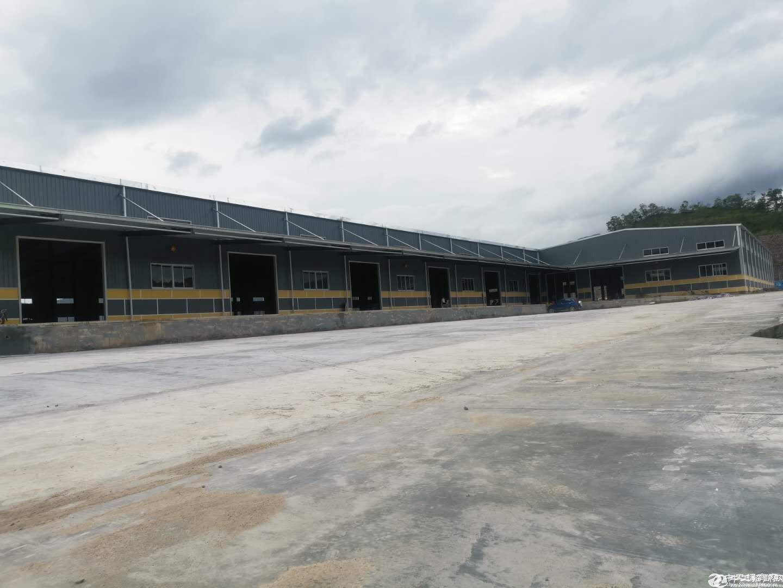 大亚湾靠近深圳专业物流仓库出租总面积16000平米出租