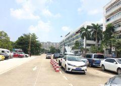 坪山中心电商产业园厂房出租,送全新办公家具,50平方起分租。