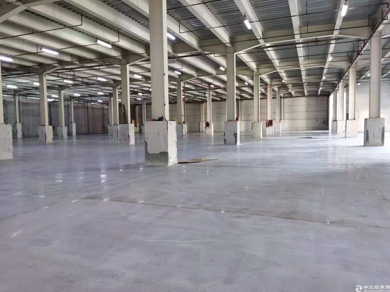 南山新出单一层4000平标准物流仓库