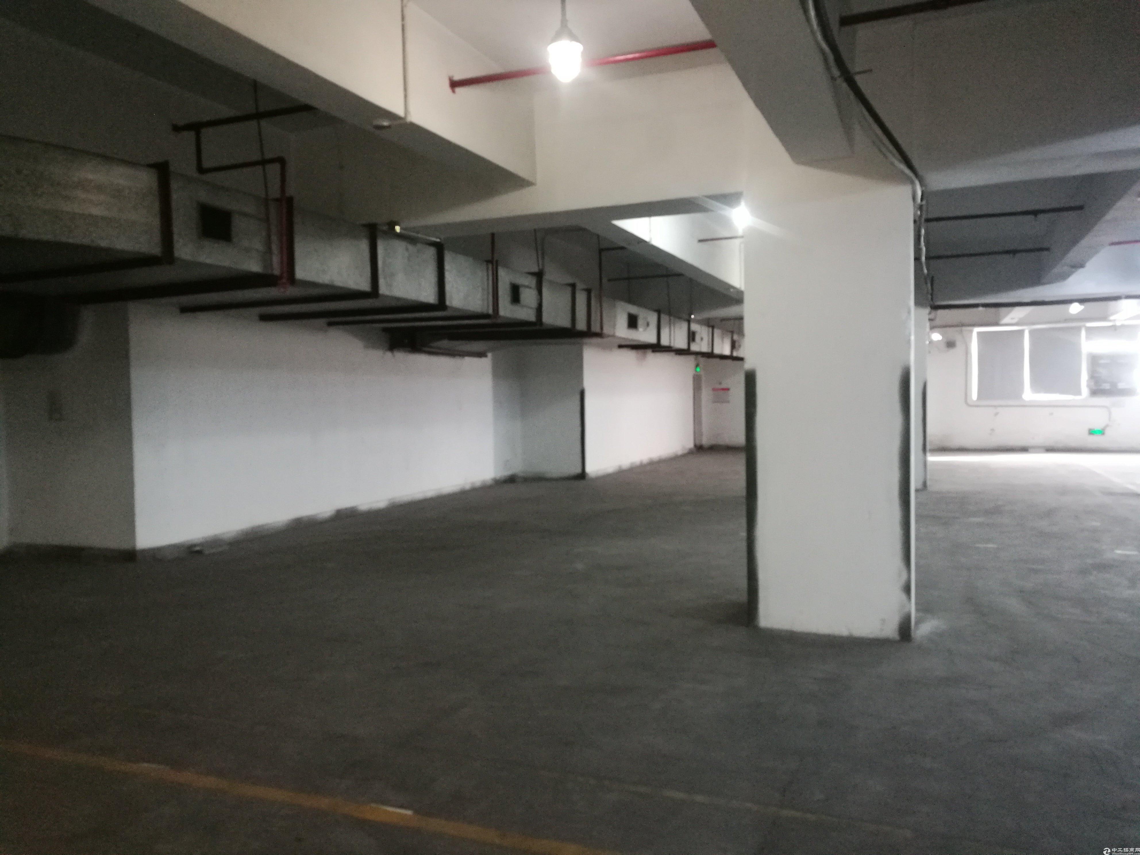 西丽地铁口附近标准丙二类物流仓一楼1300平