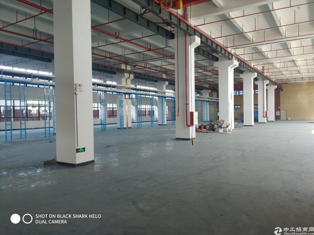惠阳永湖原房东工业园全新红本独栋18600平方可分层租