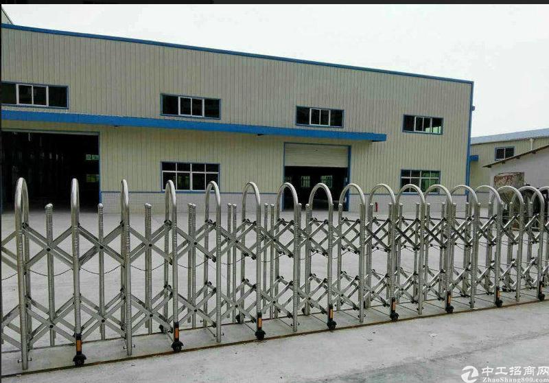 望牛墩钢构厂房出租共2400平米,主干道边可办证