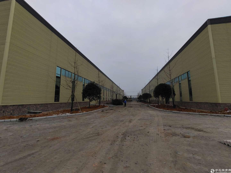 1000-5000平钢结构单层厂房塑料机加可进