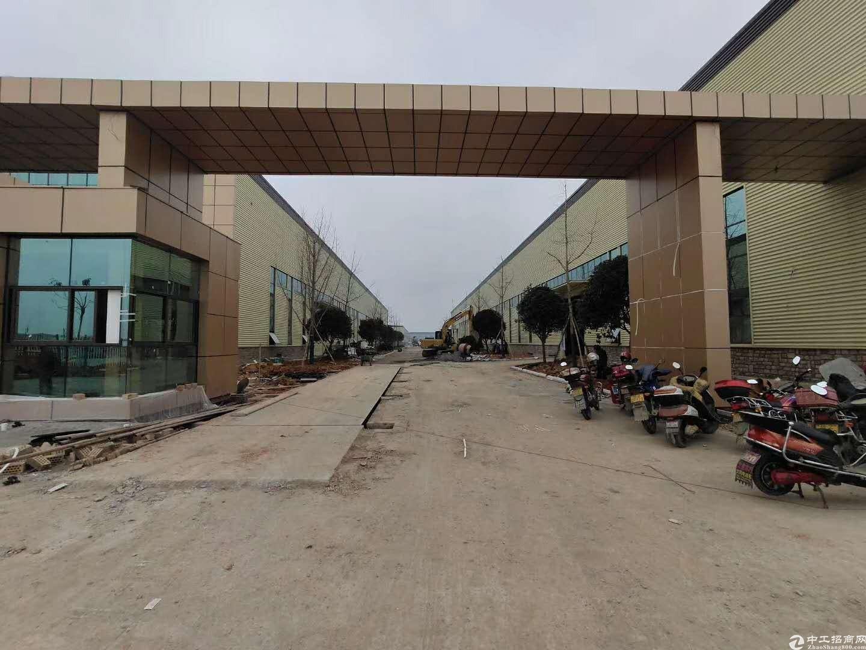1000-5000平钢结构单层厂房塑料机加可进-图3