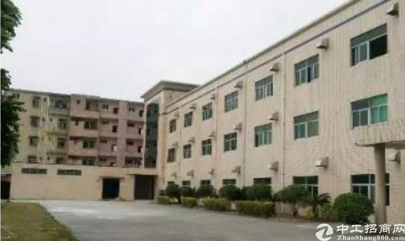 花园式独门独院万江区4216方标准厂房仓库出租可分租电大