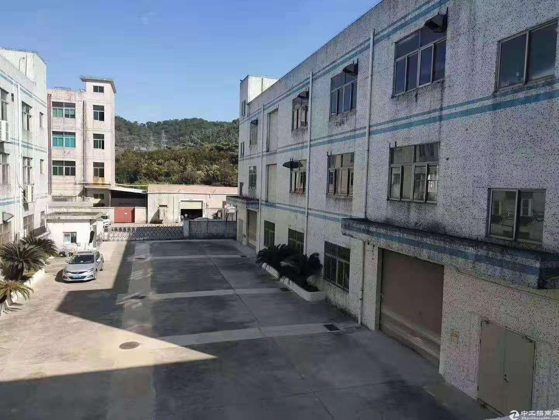 平湖清平高速出口一楼钢构1800平方厂房仓库招租。