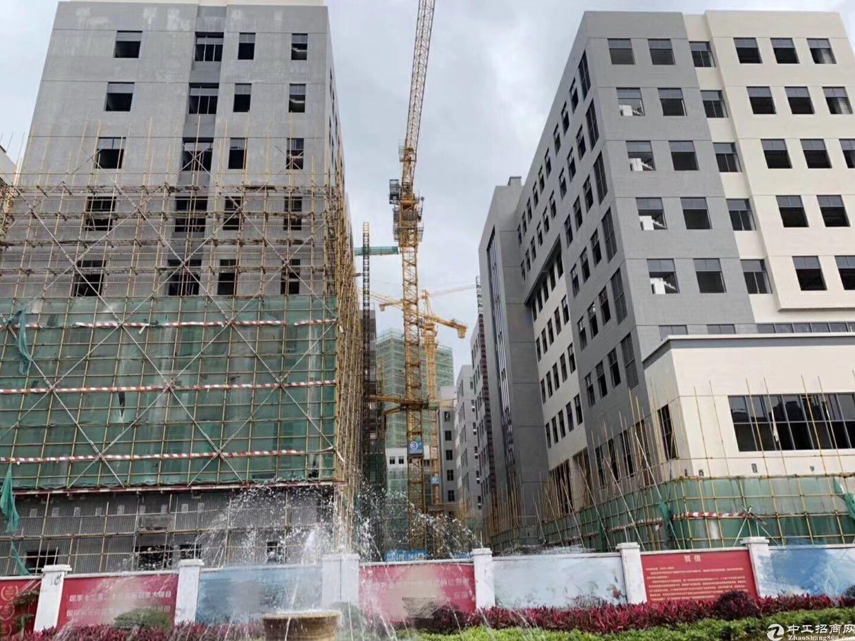 大岭山一楼红本厂房出售,重工业行业,国有证五十年产权