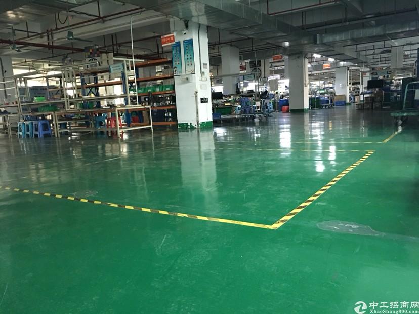 番禺区钟村全新带地平漆标准厂房1750出租,有2吨货梯