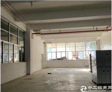 万江区750平方独立带装修标准厂房急租一手房东出租