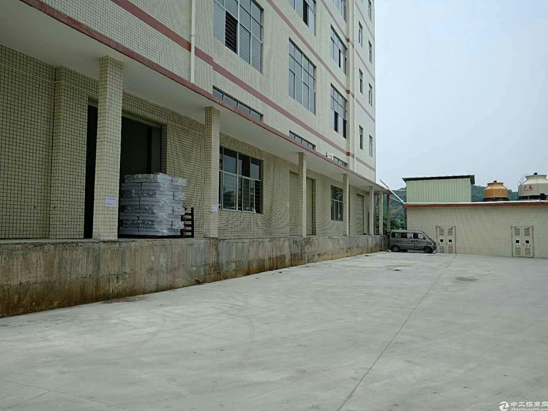 惠阳205国道边新出原房东楼上1200平