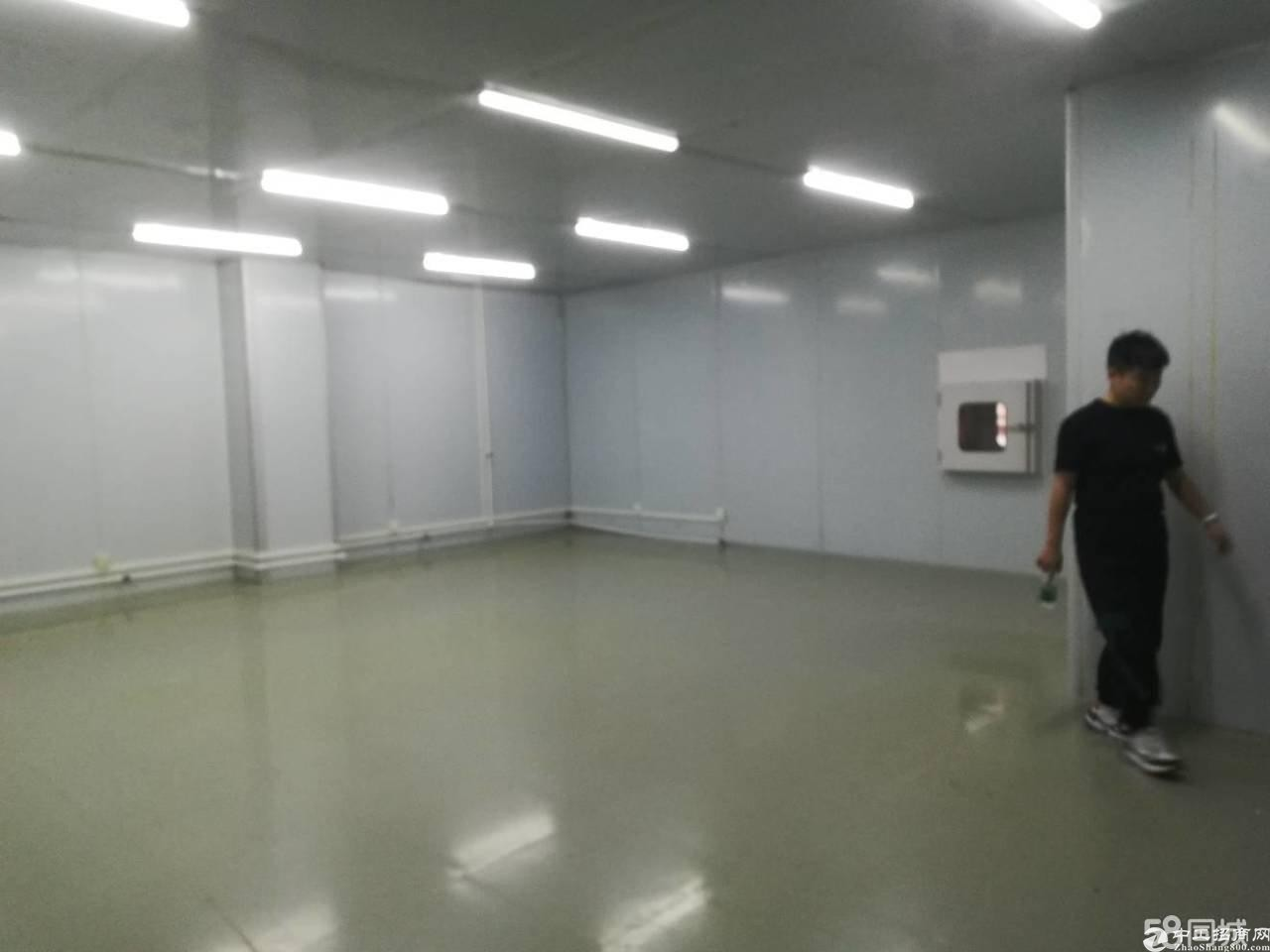 龙华大浪北路新出独院厂房单层1400平现成装修仓库现成办公室