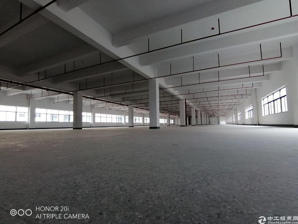 惠州镇隆高速口旁全新厂房出租,空地大形象好