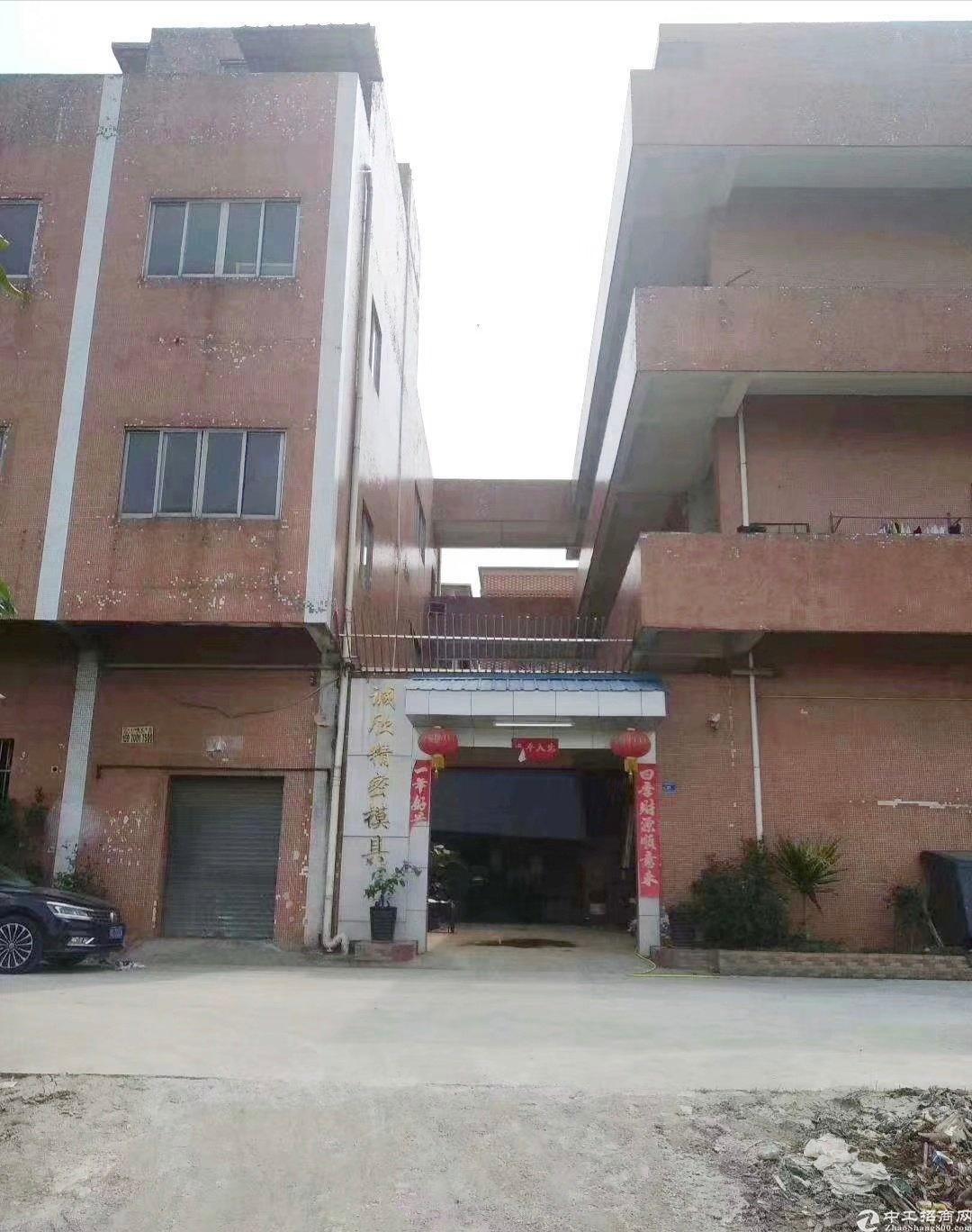 荔湾新出独门独院厂房1-3层1800平方,宿舍饭堂600平方