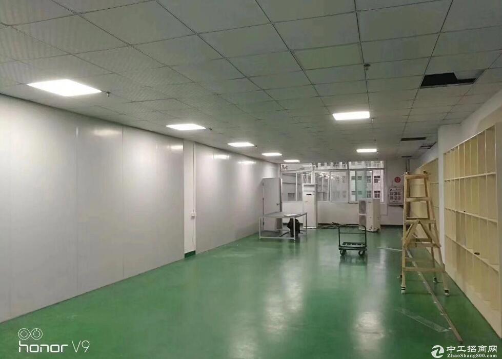 徐州高新区新医药产业园,标准厂房出租,红本