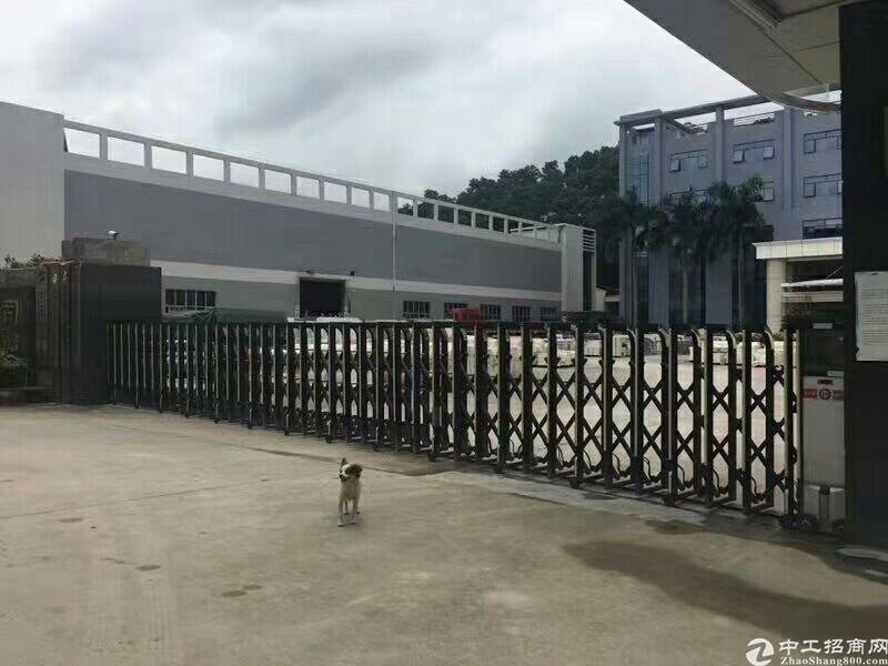 清溪中心独院钢构厂房4600平出租可做大型仓库制衣厂电子厂