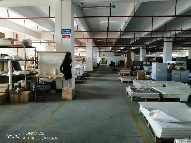 惠州惠阳镇隆国道边独院厂房3000平米出租.