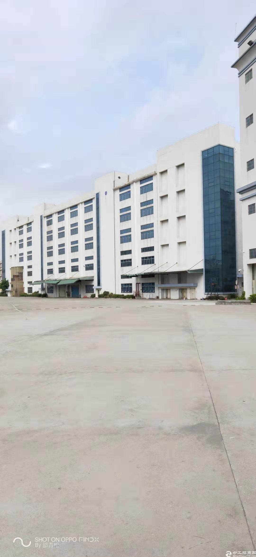 平湖华南城新出厂房仓库100—30000大小可分租