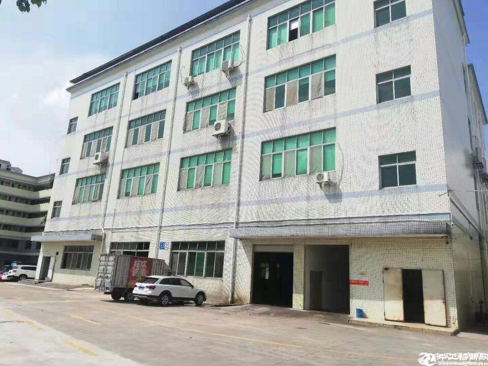 一楼厂房、仓库、办公室出租!800平方起分租