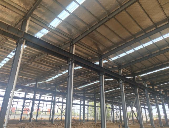新密钢构厂房厂房出售,高11.8米