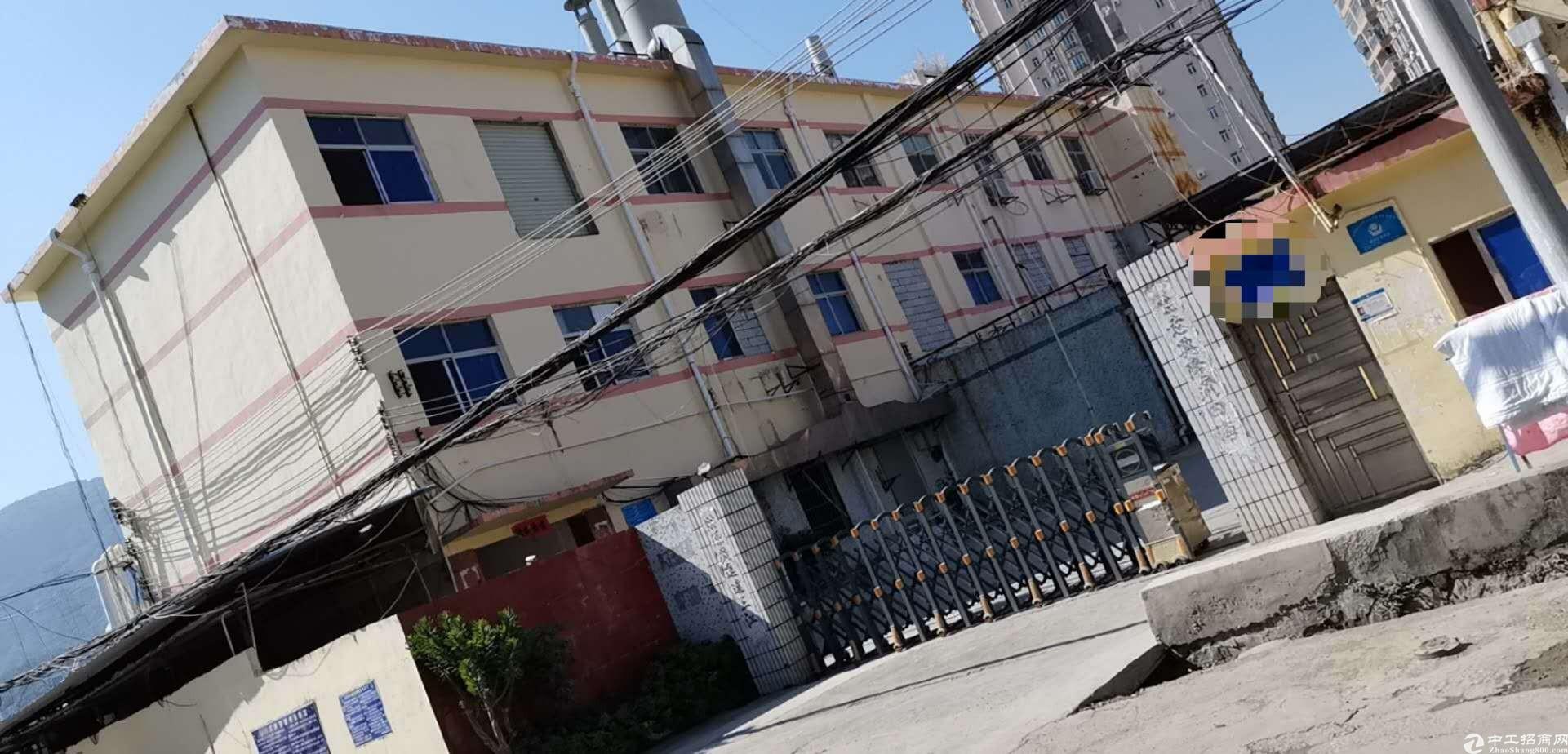 坪山新出原房东带线路板牌照1100平厂房出租。