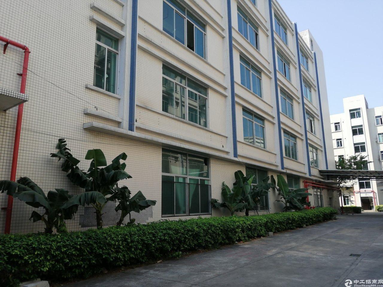 广州黄埔占地10亩建筑6800㎡不动产权证厂房出售独门独院