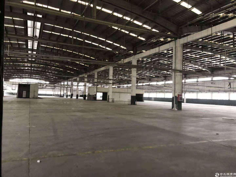 龙华大型园区标准仓20000平