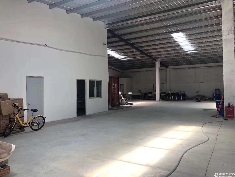 坑梓原房东980平钢构厂房出租适合各类机械生产及仓库
