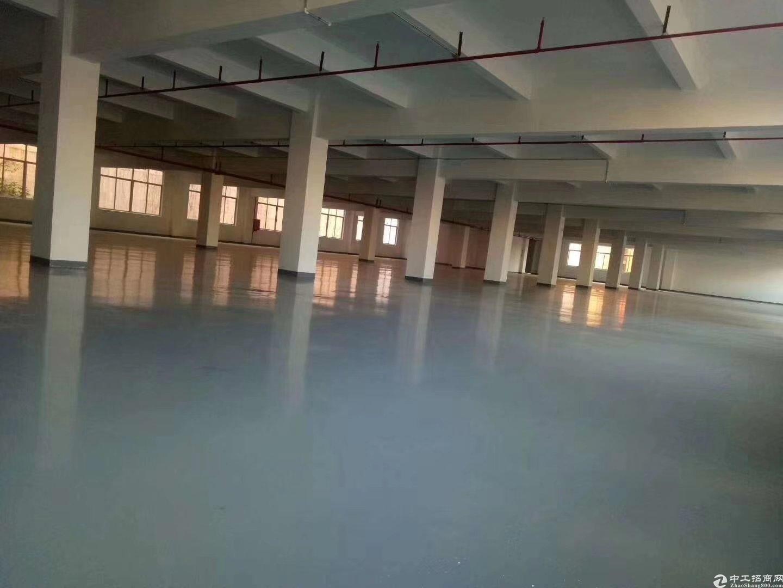 广州白云江高神山工业区,神山社区区长自建万博app官方下载出租