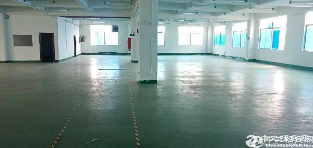 坂田高实用率办公厂房仓库100平至800平出租,