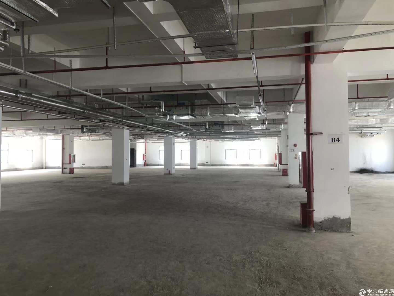 坪山坑梓新出原房东红本一楼650平厂房出租。
