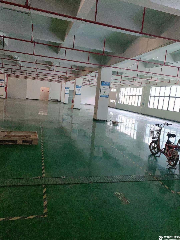 坪山碧岭工业园新出三楼550平带精装修红本厂房租金14元.