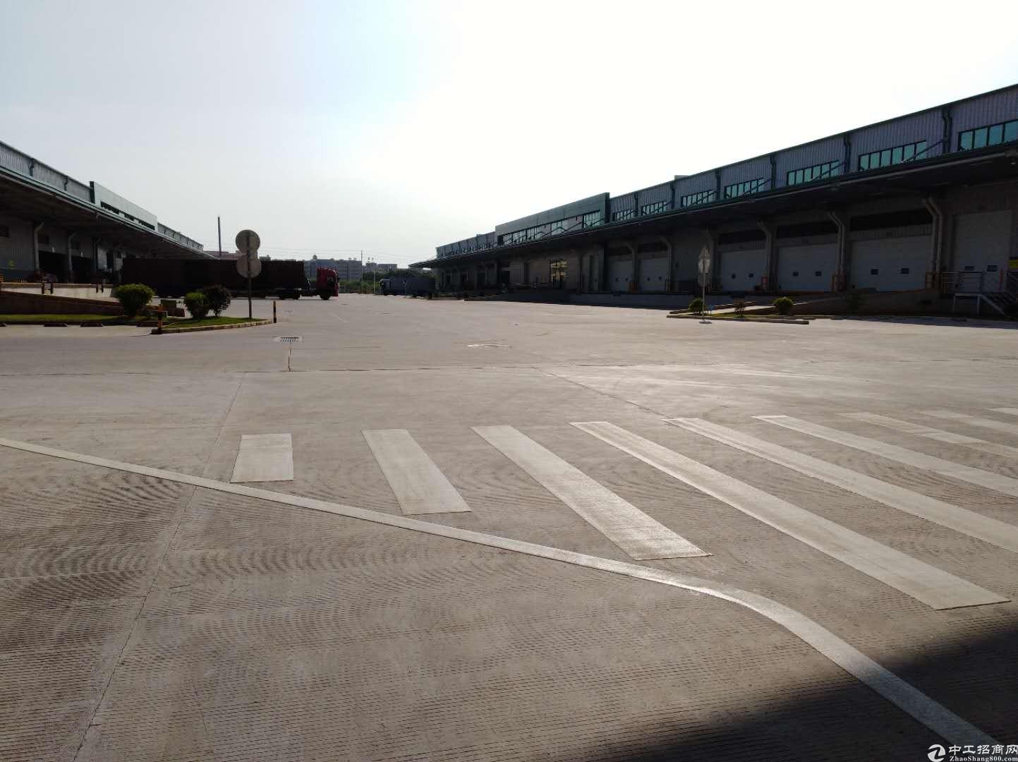 深圳盐田新出原房东高标物流仓6500平带卸货平台丙二类消防