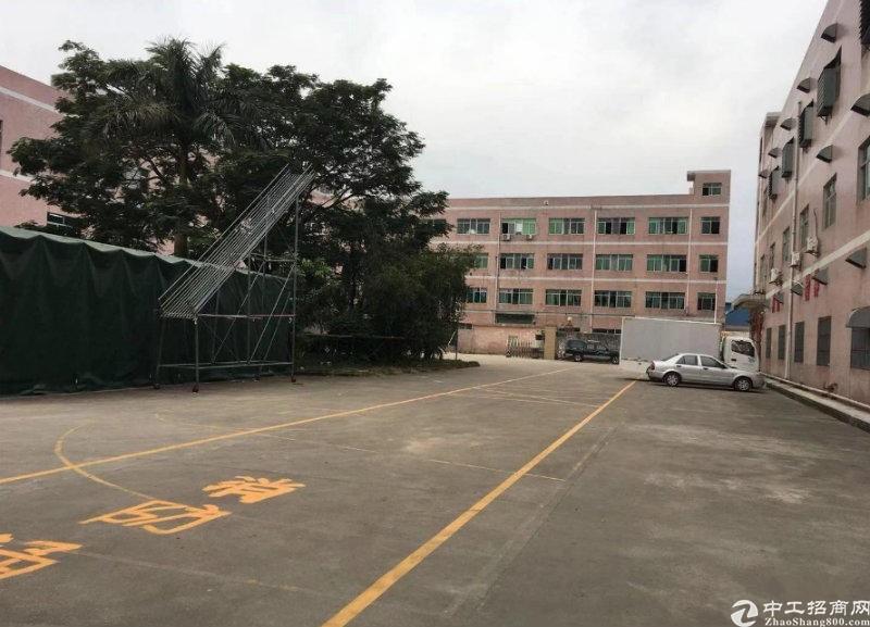 龙岗中心城标准一楼万博app官方下载仓库1050平方