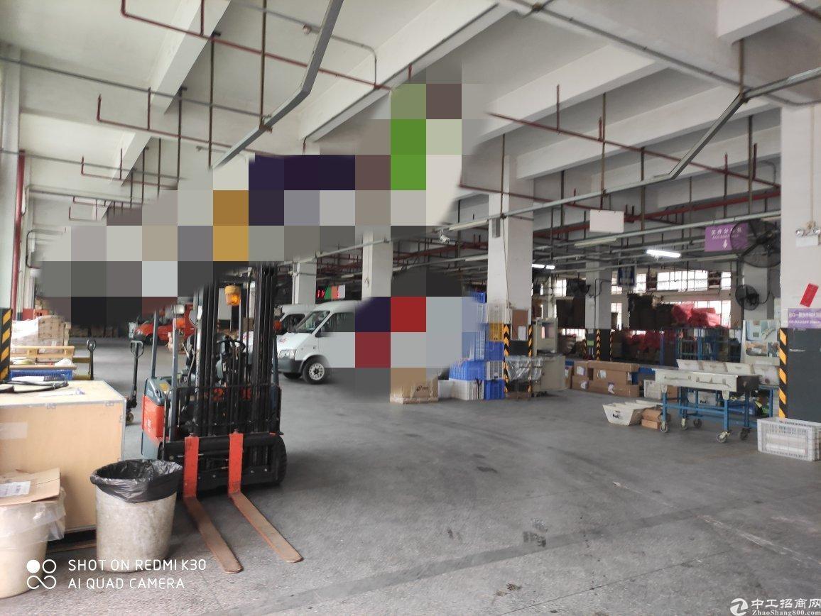 龙华清湖独门独院仓库厂房23000平带整层精装修可分租
