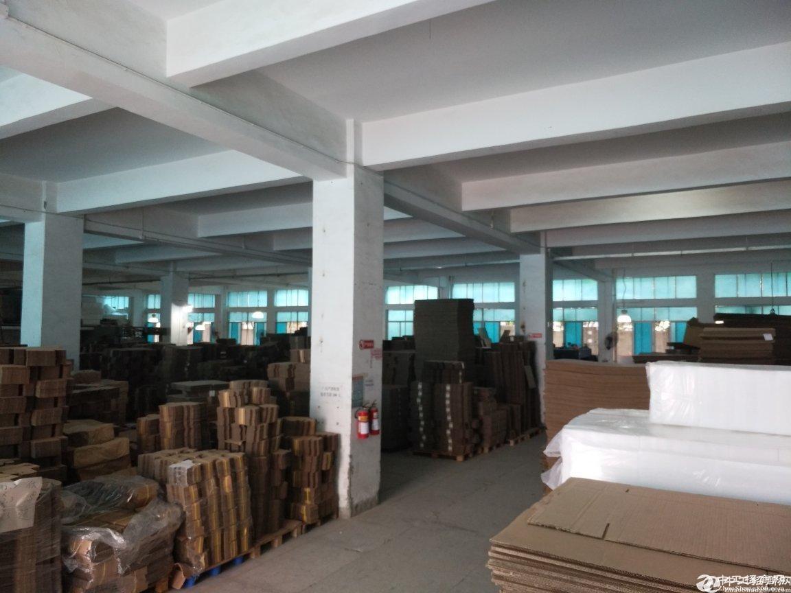 [西丽厂房]西丽南岗工业区花园式1200平整层精装厂房出租