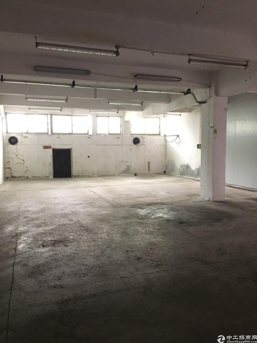 坪山碧岭一楼260平米标准厂房出租,可以注册公司、办环评