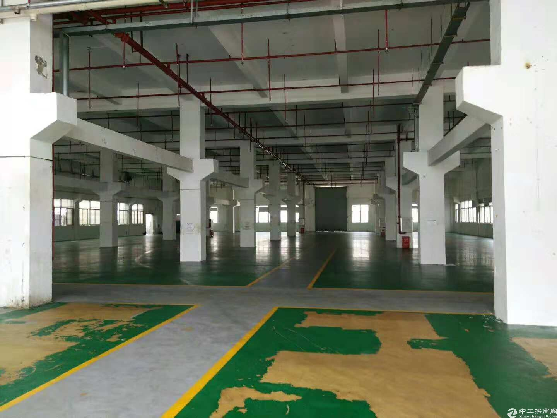惠阳秋长高速路口旁一楼1200平方带塑胶环评厂房分租-图2