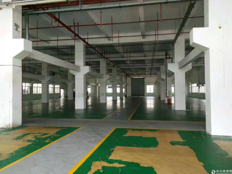 惠阳秋长高速路口旁一楼1200平方带塑胶环评厂房分租-图3