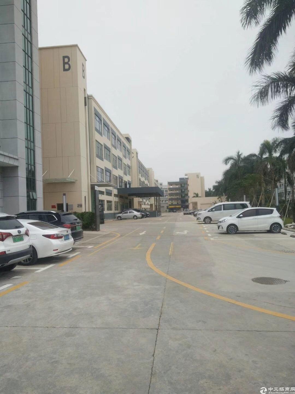 坪山生物产业基地生命科技园三楼新出700平方带装修出租