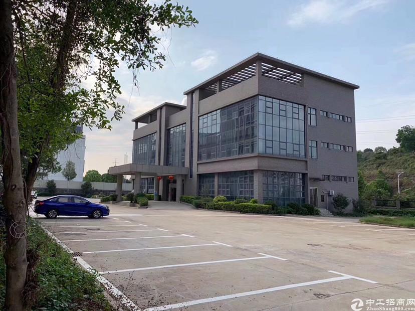 坪山大工业区新出独栋红本厂房2000平方可分租有补贴