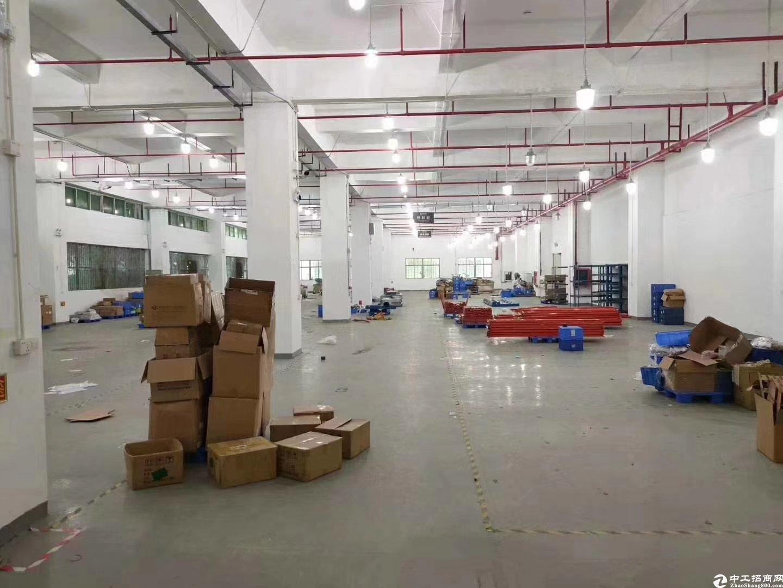 坪山高速出口附近新出原房东二楼带装修1000平厂房出租。