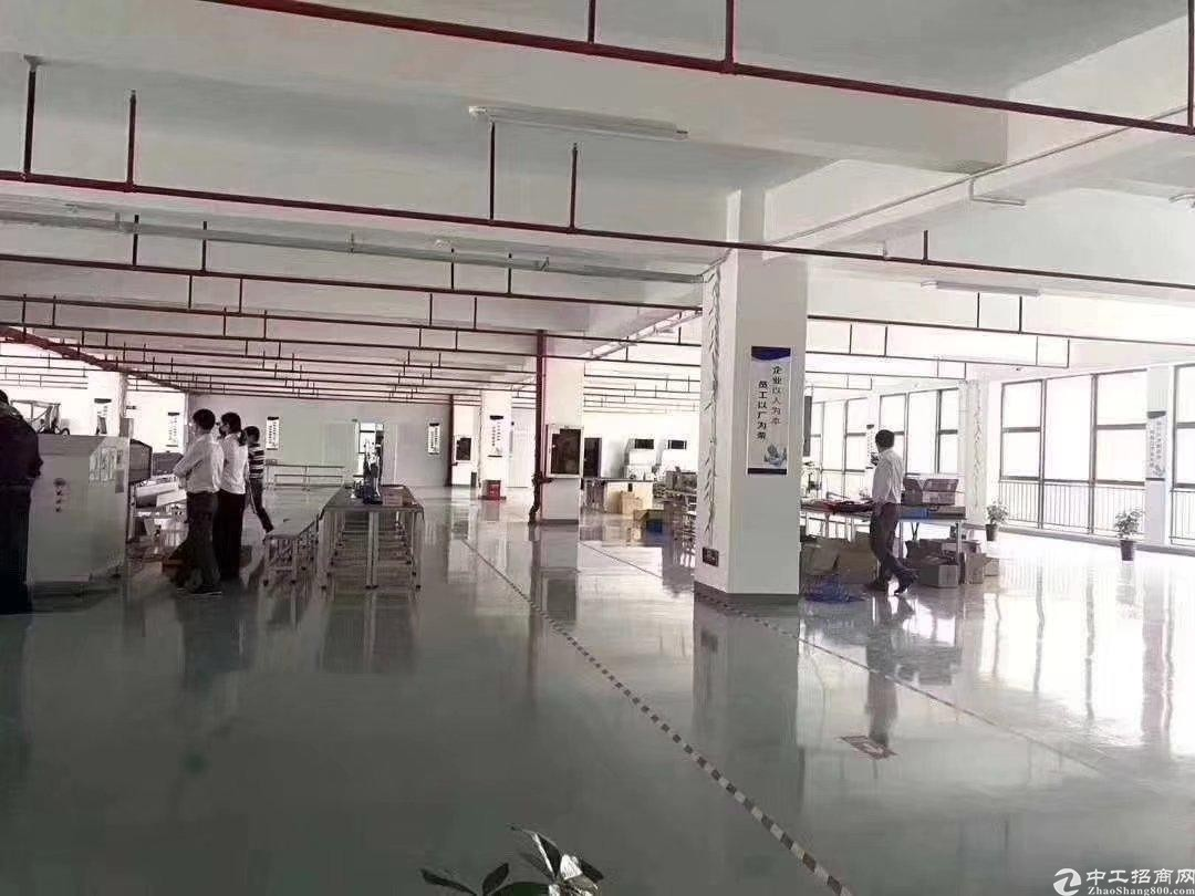 布吉丹竹头丹平快速厂房仓库出租:一楼500平米,800平米