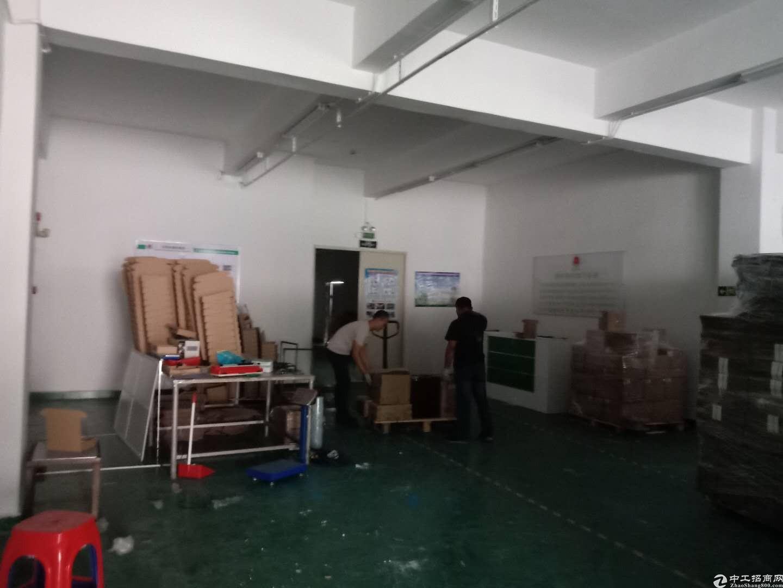 坪山六联一楼红本厂房三百平,可做各类小加工