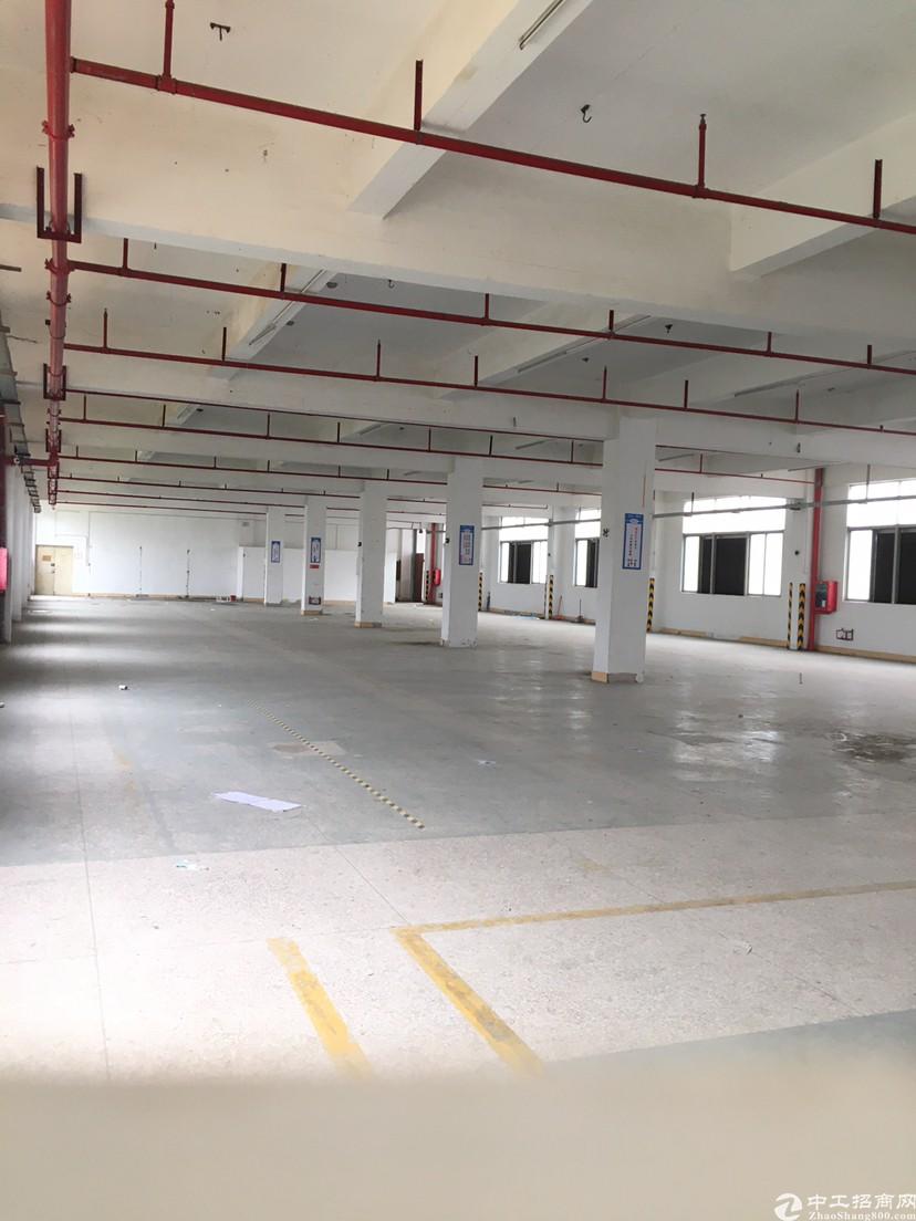 坪山六联主干道边新出独栋厂房3700平米有红本消防喷淋