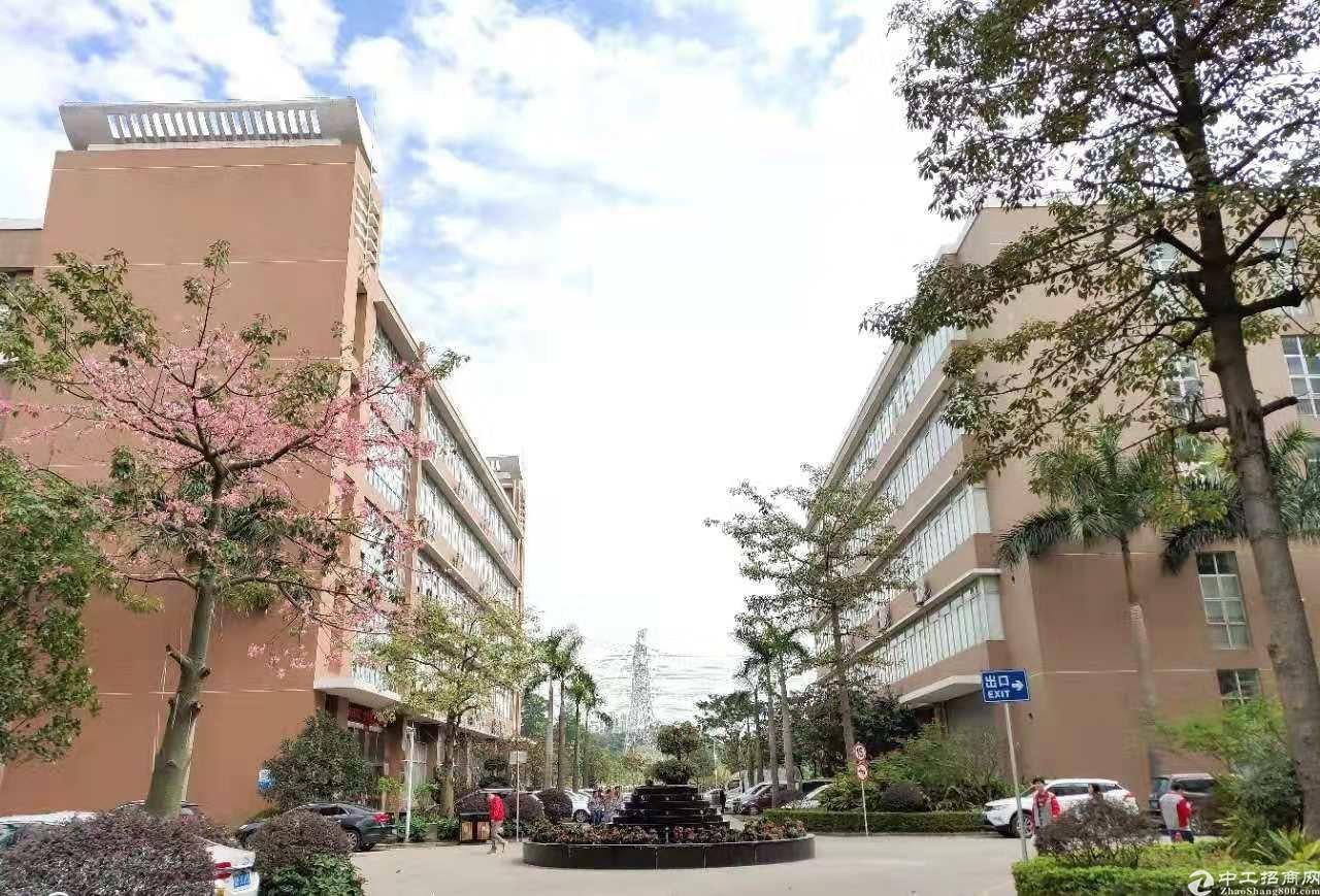 深圳大浪新百丽工业区附近12500平原房东无公摊带装修厂房招