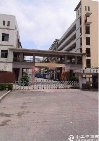 东坑镇占地10643㎡国有证万博app官方下载出售